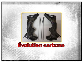 Protection cadre carbone TRRS